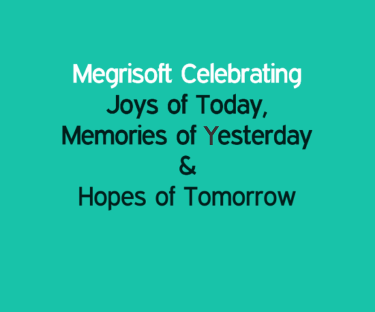 MegriSoft Celebrating 24 Years Of Success & Excellence